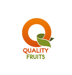 quality fruits letter q icon vector image