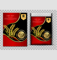 Red rice report template vector