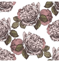 Seamless ornament with hand drawn roses vector