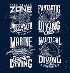 tshirt print with sketch sea shells and corals set vector image