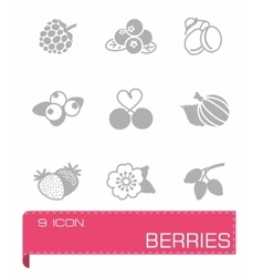 Berries icon set vector image