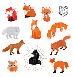 fox cartoon cute of animal vector image