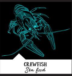 crawfish for a seafood menu vector image