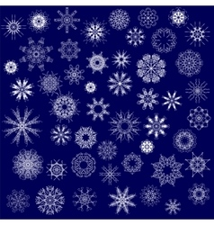 Different Winter Snowflakes vector image