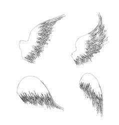 four outline wings vector image
