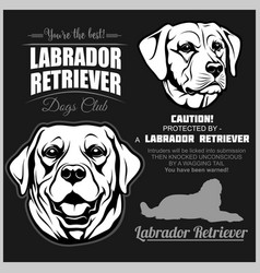Labrador retriever dog - set on black vector