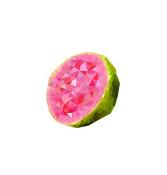 Polygonal guava vector