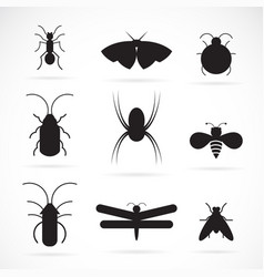 insects group on white background insect animal vector image vector image