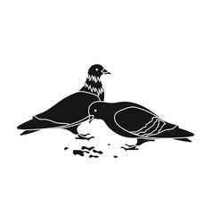 pigeonold age single icon in black style vector image vector image