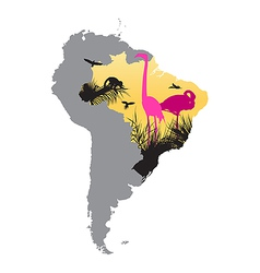 pink flamingos in Brazil vector image vector image