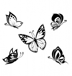 butterflies tattoo vector image