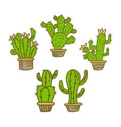 cactus pot design template vector image