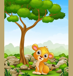 Cartoon lion sitting in the jungle vector