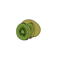 kiwi fruit hand drawn clipart icon vector image
