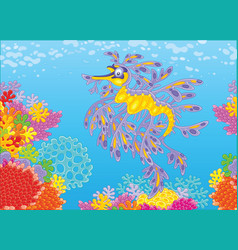 leafy sea dragon on a coral reef vector image