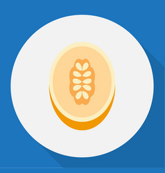 of dessert symbol on melon vector image
