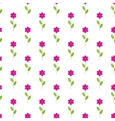 Flower isolated background in paper flat style vector image vector image