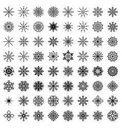 big set of snowflakes vector image