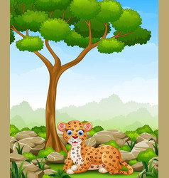 Cartoon leopard lay down in the jungle vector