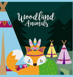 fox wooland animals cartoon vector image