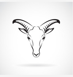 goats mountain head on white background wild vector image