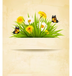 Grass with flowers on old paper background vector