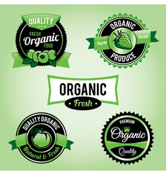 Organic Labels and Badges vector image