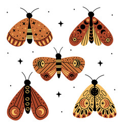 set isolated magic moths and butterflies vector image