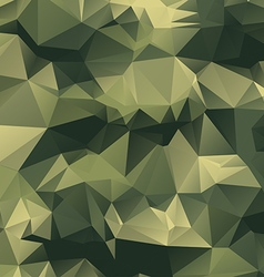 Polygonal Camouflage Background vector image vector image