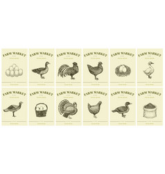 Labels with farm birds and eggs set templates vector