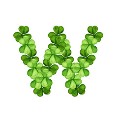 Letter w clover ornament vector