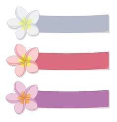 Set of colored banners with flowers vector image