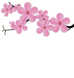 Stylized cherry Japan cherry branch with blooming vector image
