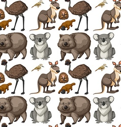 Seamless background with Australian animals vector image