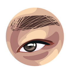 Brown eye in circle asian person body part vector
