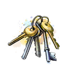 bunch of keys vector image