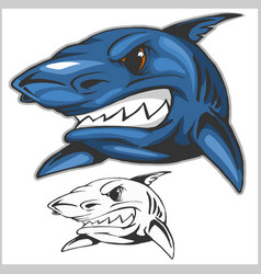 Cartoon shark mascot vector