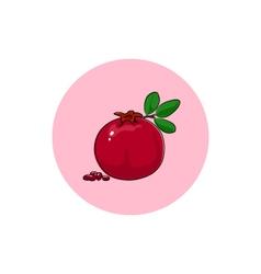 Icon Colorful Pomegranate vector image