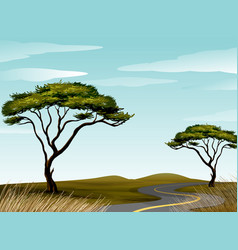 Road through savanna field vector