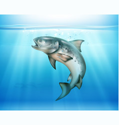 fish underwater realistic background vector image