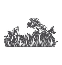 grayscale contour of field grass and plants vector image