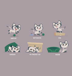 prepositions cat playing with box learning vector image