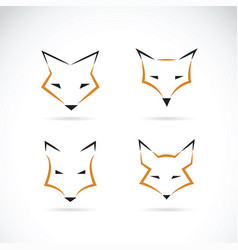 fox face design on white background wild animals vector image