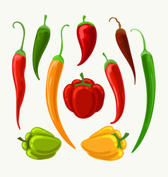 different peppers set vector image