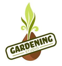 gardening isolated icon plant or vegetable sprout vector image