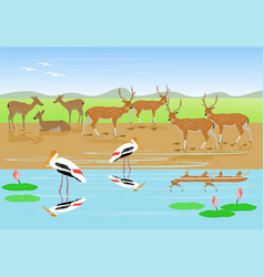 Herds of deer are resting along the stream vector