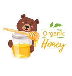 honey jar and character bear vector image