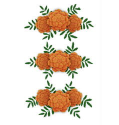marigold flower design elements vector image