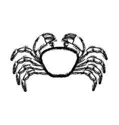 Monochrome blurred line contour with crab vector
