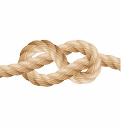 realistic rope line eith knot yellow twisted vector image
